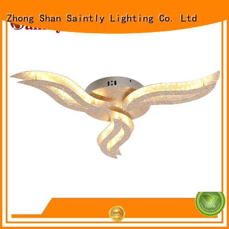 Saintly ceiling decorative ceiling lights inquire now for study room