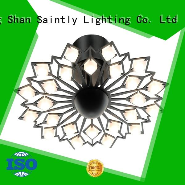 Saintly ceiling decorative ceiling lights factory price for bedroom